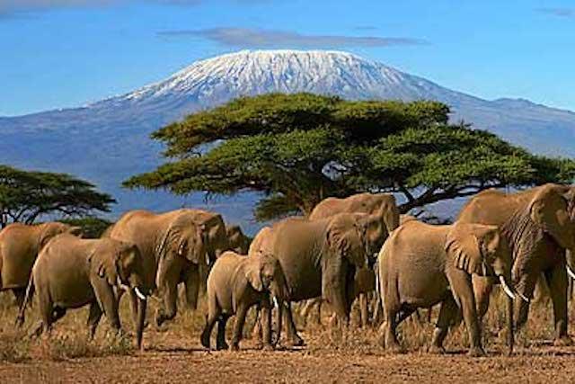 Reise nach Tansania