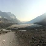 Icefield Gletscher