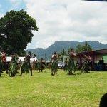 Fiji Foto Collage