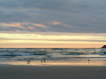 Strand Dunedin