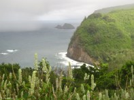 Hawaii - Big Island
