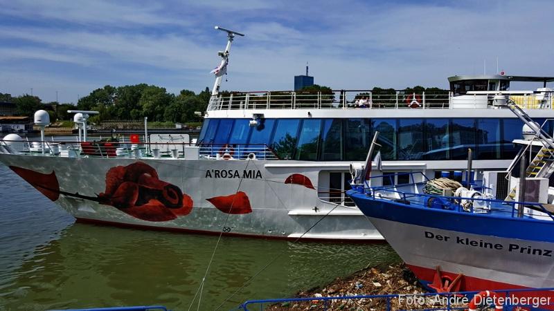 Belgrad - Flußkreuzfahrt Arosa Mia