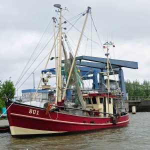 Ein roter Krabbenkutter im Husumer Außenhafen