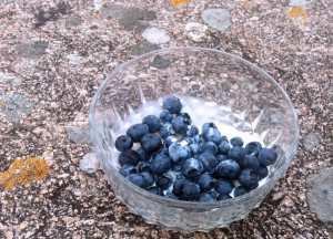 Eine Glasschüssel mit frischen Blaubeeren