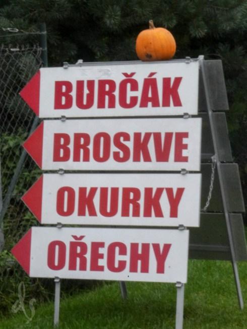 3-blog-burcak-1160608