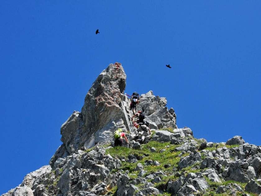 Vögel kreisen über dem Gipfel des Rigidalstocks in der Schweiz