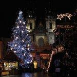 11 Weihnachtsleckereien aus Europa (+Rezepte)