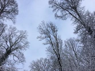 Winter4ab
