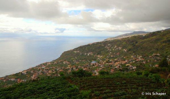Madeira Aussicht auf Terrassenfelder