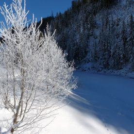Lechtal_Winterzauberlandschaft