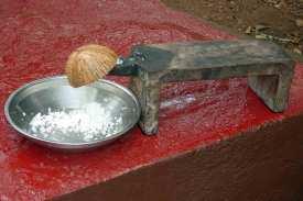 Unentbehrliches Küchengerät, zumindest in Indien: Kokosraspel