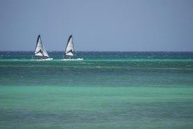 Aruba-ABC-Inseln-ABC-A-13-Meeresszenen_Segelsport_1k4