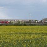 Spargel-Landschaft, mal anders – Windräder in der Natur?