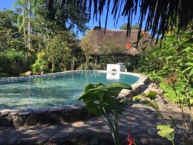 Pool im France Amazonia