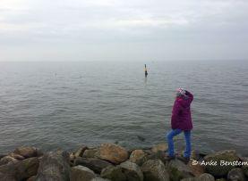 Blick übers IJsselmeer