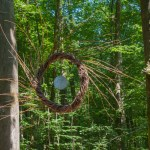 Eintauchen in die grünen Fluten: Waldbaden in Bad Iburg
