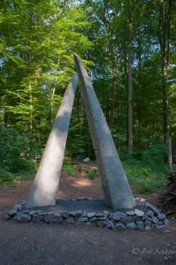 Lichtung zum Waldbaden auf der Landesgartenschau in Bad Iburg