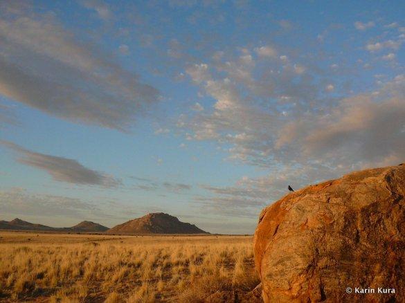 Wüste bei Aus1.Namibia. Karin Kura