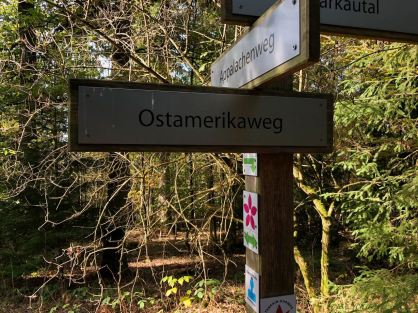 Schilder im Weltwald Bad Grund