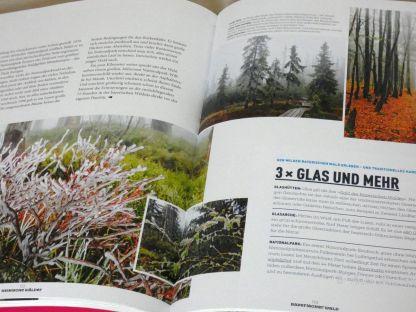 Reisefeder Benstem Bücher Waldwunder1