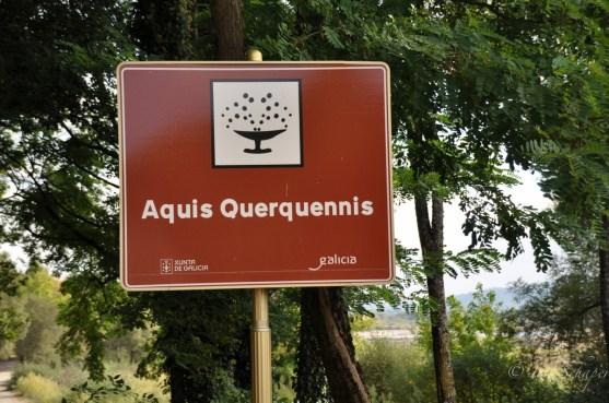 Schild Aquis Querquennis