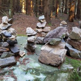 6 Harz Schnarcherklippen Benstem Reisefeder Natur wandern