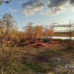 Herbst in der Finnmark