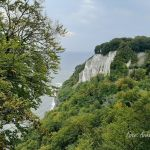 Buchen und Kreidefelsen im Nationalpark Jasmund