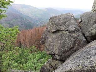 Okertal_Benstem_Reisefeder_Natur_Wandern_Harz_AlterMann