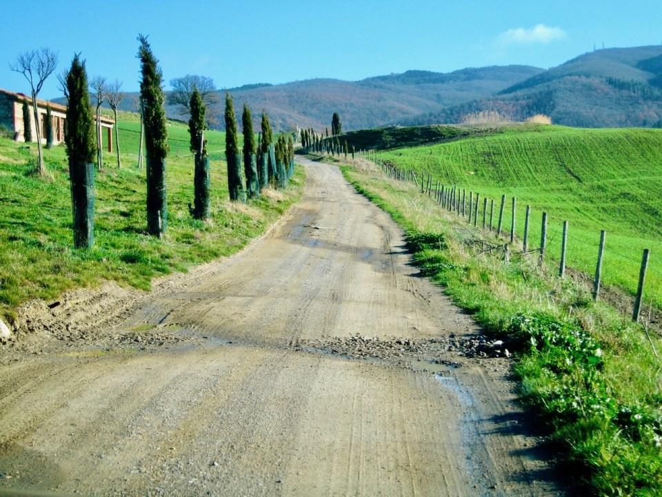 Sykkelferie i Toscana Grusvei med sypresser