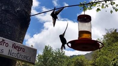 Salento,Valle de Cocora,Kolumbien,Plaza Bolívar,Kaffee