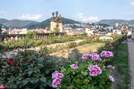 Rosehagen ved slottet i Děčín