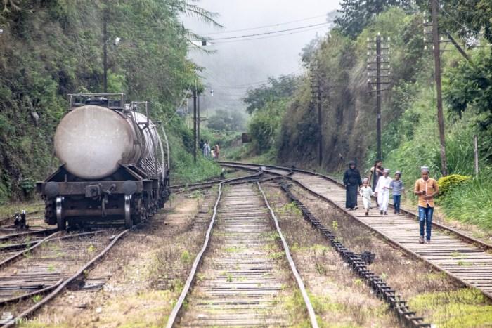 Togskinner Sri Lanka