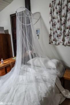 myggnetting i Thailand