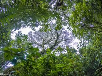 Tips til en mer klimavennlig reise