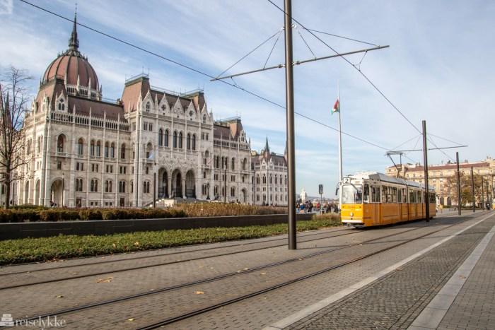 Trikk og parlament i Budapest