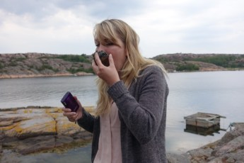 Skjærgårdsopplevelser ved Lysekil, østers