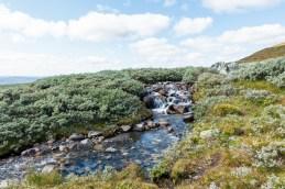 Elv Hallingskarvet nasjonalpark