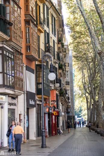 Gatelangs Palma, Mallorca