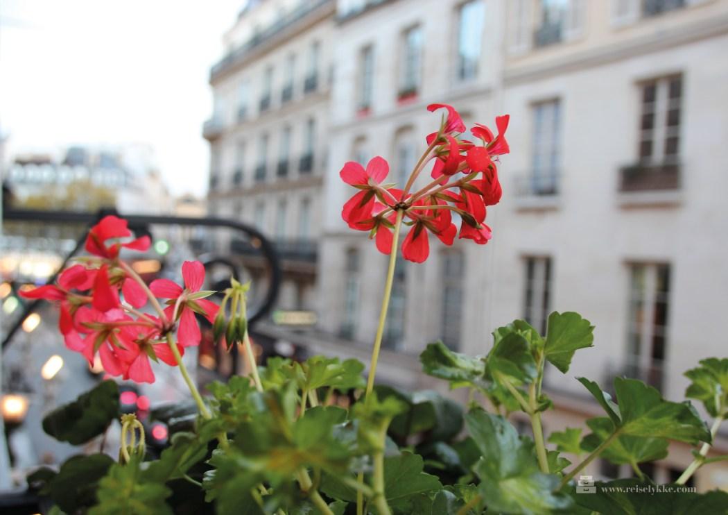 Overnatting i Paris_St.Germain