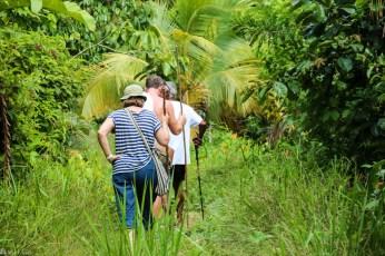 På vei inn i regnskogene på Trinidad