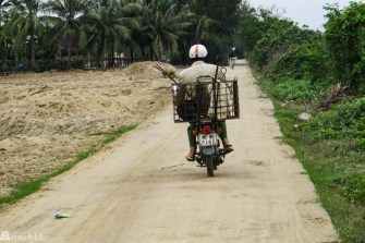Vietnam: hundefanger på moped
