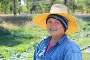 En risplukker i Thailand
