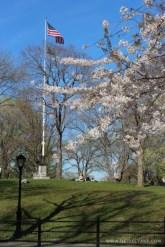 Påskedager i Central Park