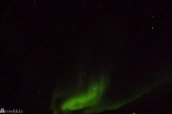Nordlys Svalbard