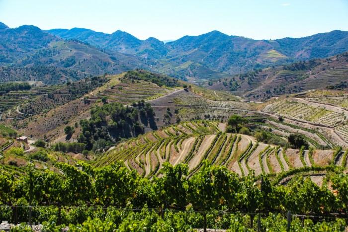 Porrera vinmarker i Priorat