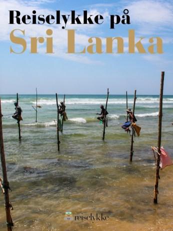 Reiselykke på Sri Lanka. En områdeguide