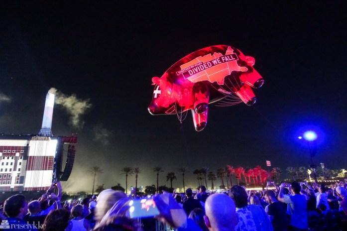 Flyvende gris under Desert Trip