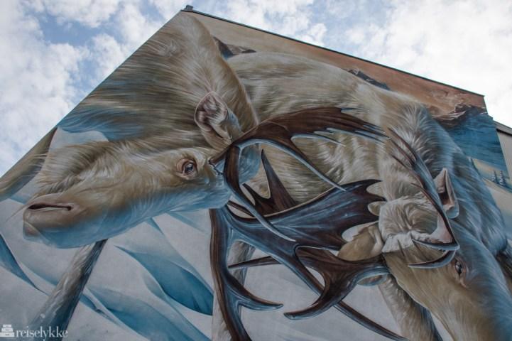 Street art har inntatt Värmland