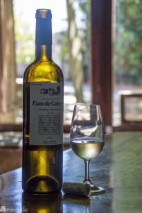 Vin fra Pazo de Galego